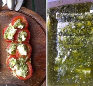 Tomaten mit Scharfskäse